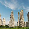 The Stones At Callanish  by Tim Gainey