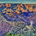 The Sun Is Up Grand Canyon Morning Shadows Arizona Art by Reid Callaway