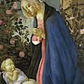 The Virgin Adoring The Sleeping Christ Child by Sandro Botticelli