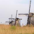 The Windmills Of Kinderdijk by Wolfgang Stocker