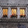 The Windows Of Sofia by Yavor Mihaylov