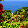 There Is A Paradise - Maui Hawaii by Glenn McCarthy Art and Photography