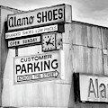 These Shoes Alamo Shoes by William Dey