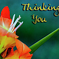 Thinking Of You by Annette Persinger