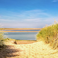 Through The Dunes Over To Budle Bay by Naylors Photography