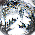 Through The Looking Glass Winter Wonderland by Peggy Collins