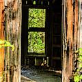Through The Old Blacksmith Shop by Terri Morris