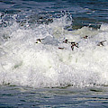 Through The Waves by Lora J Wilson
