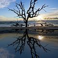 Tidal Pool Reflections by Debra and Dave Vanderlaan