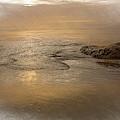 Tide Introspective by Bill Posner