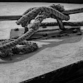 Tied Up And All Docked Up Bw by Susan Candelario