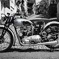 Tiger T100 Vintage Motorcycle by Mark Rogan