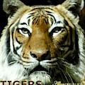Tigers Mascot 4 by Larry Allan