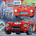 Tom Payne's No 13  289 Cobra Competition by David Lloyd Glover