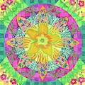 Tom's Squash Blossom by Sandy Thurlow