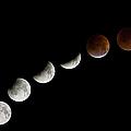 Total Lunar Eclipse, 28 August 2007 by Diane Miller