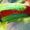 Toucan Closeup by Alice Gipson