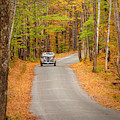 Touring The Back Woods  by Brian Jannsen