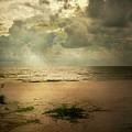 Tranquil by Jai Johnson