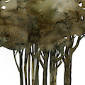 Tree Impressions No. 1a by Kathy Morton Stanion