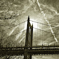 Triboro Bridge In Gold by Cate Franklyn