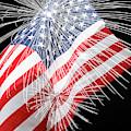 Tribute To The Usa by Terri Morris