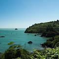 Trinidad Bay California by Yulia Kazansky