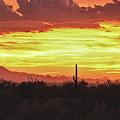 Tucson Mountains Sunset, And Saguaro by Chance Kafka