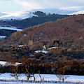 Tulchan In Winter by Phil Banks