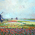Tulip Fields Near The Hague By Claude Monet 1886 by Claude Monet