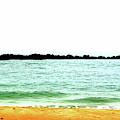 Turquoise Beach Scenery by Cynthia Guinn