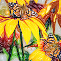 Twin Painted Lady Butterflies Pencil by Don Northup