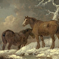 Two Horses In The Snow by George Morland