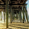Under The Pier by Amy Dundon