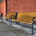 Union Station Bench by Jean Noren