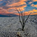 Unique Perspective Of A Sunset At White Sands, New Mexico  by Chance Kafka