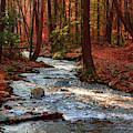 Upper Dunnfield Creek by Raymond Salani III