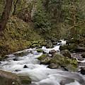 Upper Multnomah Flow by Dylan Punke