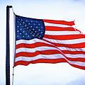 U.s. Flag 5 by Tom Kostro