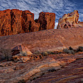 Valley Of Fire Elephant Rock by Susan Candelario