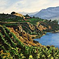 Valley Vineyard by Sharon Duguay