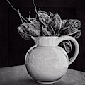 Vase And Seed Pods by Sandra Selle Rodriguez