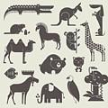 Vector Animals Set by Vector Pro