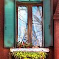 Venecian Window by Harriet Feagin