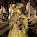 Venetian Mask 2019 005 by Wolfgang Stocker