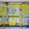 Venice Beach Garage Door  by John McGraw