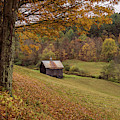 Vermont Countryside Autumn 2018 by Terry DeLuco