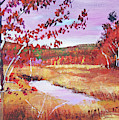 Vermont Creek by David Lloyd Glover