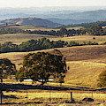 Victoria Countryside Layers by Jerry Griffin