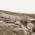 View Looking North Along The Pacific Grove Waterfront To Lovers  by California Views Archives Mr Pat Hathaway Archives